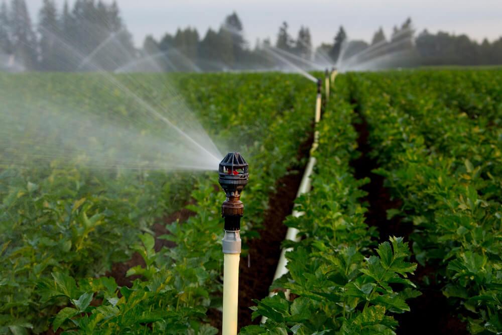 Chi phí cho hệ thống tưới nông nghiệp liệu có quá đắt đỏ ?