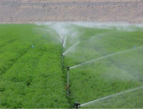 Hệ thống tưới phun nước - một phương pháp hữu ích cho người nông dân