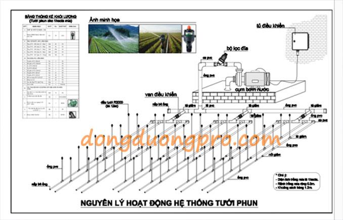 Thiết kế hệ thống tưới phun mưa cho cây trồng