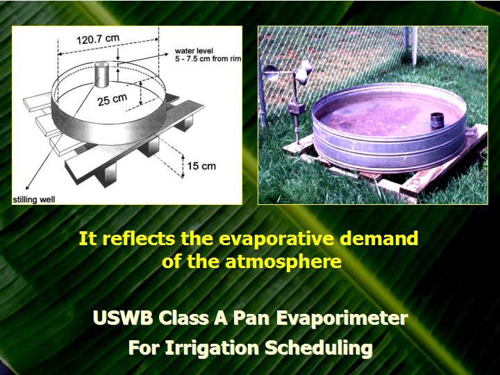 cách xác định lượng nước cho cây trồng