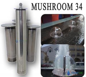 MUSHROOM 34
